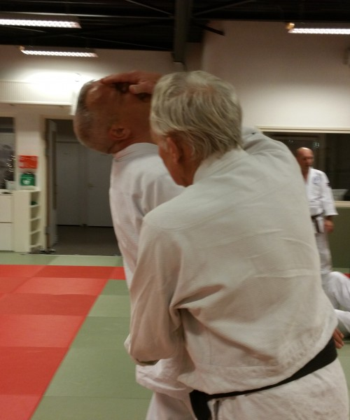 kokorodo training